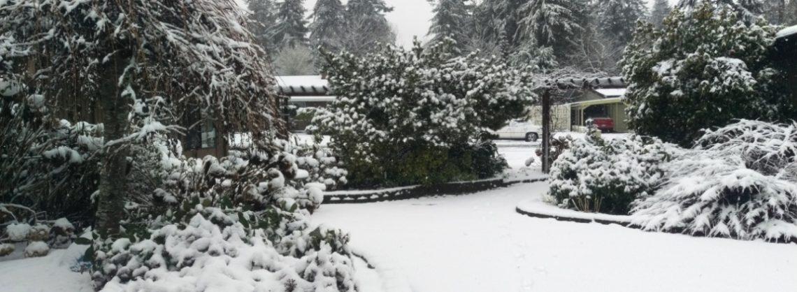 Courtyard snow day slider
